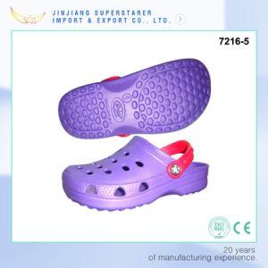 Purple Color Soft Man Clogs, Classic Design EVA Clogs Shoes pictures & photos
