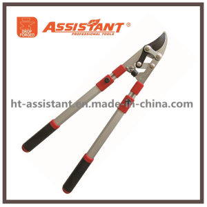 Heavy Duty Ratchet Pruning Loppers with Anodized Aluminum Telescopic Handles pictures & photos