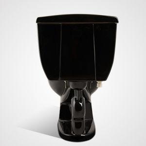 China Ceramic Economic Siphonic Flush 2PC Toilet Black pictures & photos