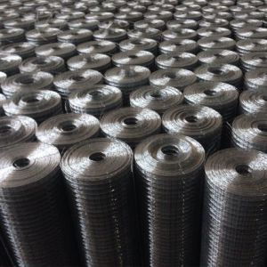 Wire Mesh Panel Welded Wire Mesh pictures & photos