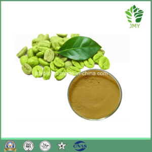Weight Loss Green Coffee Bean Extract Chlorogenic Acid pictures & photos