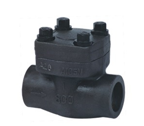 . Manufacturer of China Forged Steel Body Check Valve