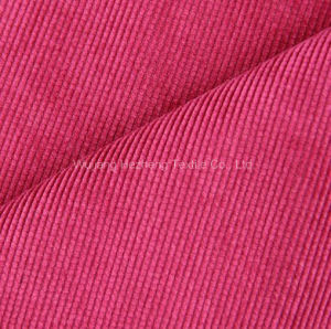 21W Corduroy Velvet Fabric for Sofa Uphosltery Furniture Shoe pictures & photos