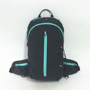 Professional Polyester Fabric Outdoor Hiking Camping Sports Travel Backpack pictures & photos
