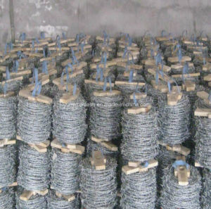 Barbed Wire/Razor Barbed Wire (specialized manufacturer) pictures & photos