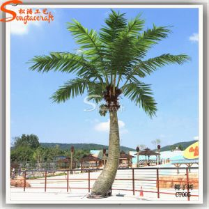 2015 Hot Sale Artificial Decorative Coconut Palm Plant Tree (CO-06) pictures & photos