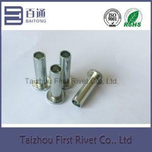 6.3X20mm White Zinc Color Flat Head Semi Tubular Steel Rivet pictures & photos