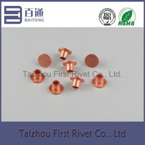 6X6mm Copper Plated Flat Head Semi Tubular Steel Rivet pictures & photos