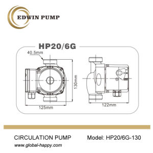HP20/6g (W) (T) Hot Water Boosting Circulating Pump pictures & photos