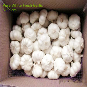 2017 New Crop Fresh Garlic From China pictures & photos