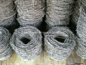 Galvanized Barbed Wire for Fence pictures & photos