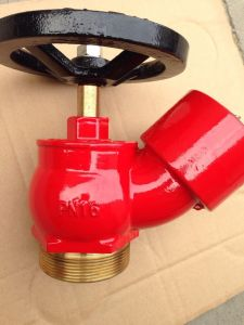 BS336 Brass Fire Hydrant Landing Valve pictures & photos