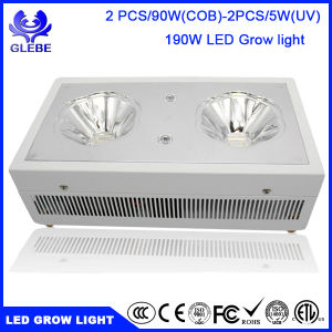 Glebe LED Plant Grow Light 120W Full Spectrum Lamp with Anti-Fire Casing for Greenhouse Hydroponic Plant Growth pictures & photos