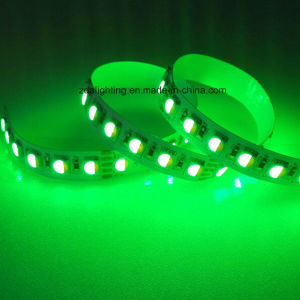 24V 96LEDs/M 4in1 RGBW/White LED Ribbon Light