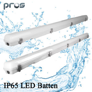 20W 40W 60W LED Tri Proof Light IP65, LED Tri-Proof Lighting, Parking Lot Lights pictures & photos
