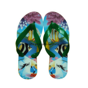 Fashion New Design Ladies Summer EVA Slipper pictures & photos