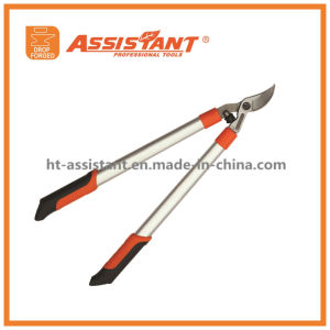 Garden Lopping Shears PTFE Coated Compound Orchard Horticultural Anvil Loppers pictures & photos