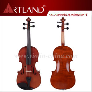 Hand Made Violin (AV50) pictures & photos