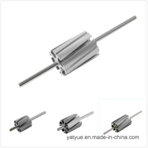 Top Quality Micro Motor Parts Rotor 16.9X5p Series pictures & photos