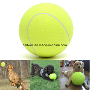 Pet Tennis Ball Pet Paw Claw Dog Toy Ball pictures & photos