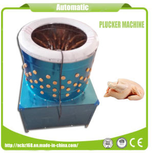 Automatic Stainless Steel Commercial Chicken Plucker Machine for Sale pictures & photos