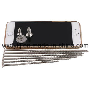 Stainless Steel 304 Self Tapping Drilling Screw pictures & photos