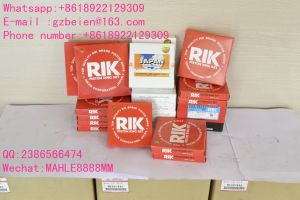 Rik Brand Ring for Excavator Engine 4m40 (Part Number: 20975-00) pictures & photos