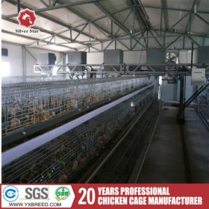 Automatic Bird Cage Chicken Poultry Farming Equipment High Intensity pictures & photos