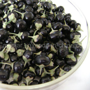 Medlar Lycium Barbarum Polysaccharides Wholesale Black Goji Fruit pictures & photos