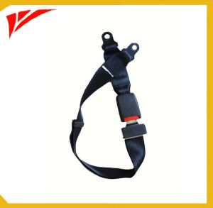 2 Point Auto Parts Safety Seat Belt pictures & photos