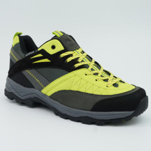 High Quality Genuine Leather Hiker Breathable Shoes with Md