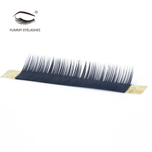 2017 New Style Soft Band Premium Mink Eyelashes Extension pictures & photos