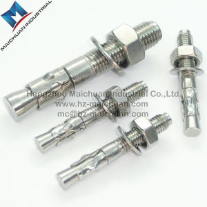 304 Stainless Steel Sleeve Anchor or Wedge Anchor Passivated pictures & photos