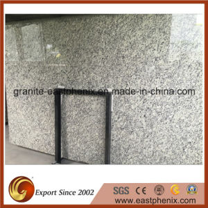 Imported Best Sellilng Grey Granite Slab pictures & photos