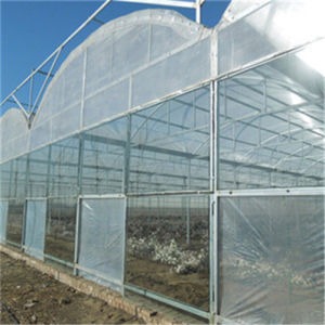10mm Clear Polycarbonate Sheet for Greenhouse