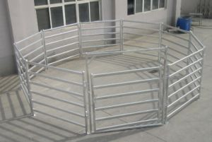 Pre Galvanized Oval Rail Cattle Panels pictures & photos