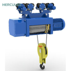 High Quality Electric Hoist Manufacturer pictures & photos