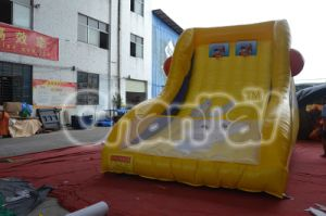 Inflatable Basketball Double Shot Sports Game pictures & photos