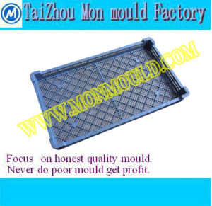 Plastic Injection Mold for Mesh Tray, Strainer pictures & photos