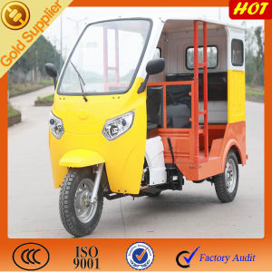 Pupluar Three Wheeler Motor for Passenger pictures & photos