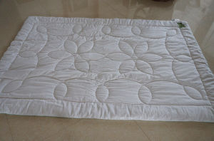 New Style Peppermint Fiber Quilt Hot Sale in China pictures & photos