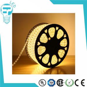AC 110V/ 220V SMD 5050 Flexible LED Strip Light 60LEDs Waterproof IP65 120 LEDs/M RGB LED Strip pictures & photos