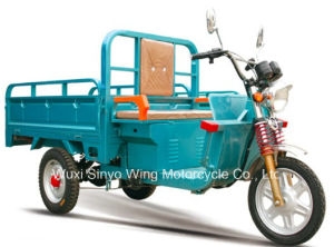 Popular 800W Cargo Electric Tricycle pictures & photos