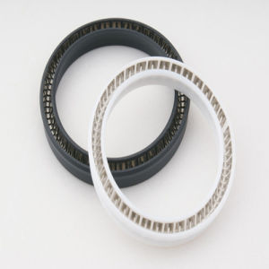 Teflon Spring Energized Lip Seals From Factory pictures & photos