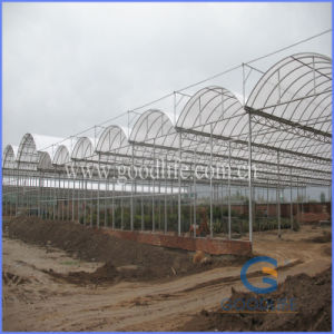 Transparent/Opal White Policarbonate Polycarbonate for Greenhouse pictures & photos