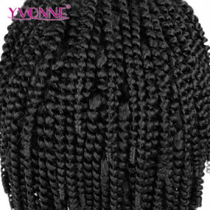 Wholesale Human Hair Brazilian Kinky Curly Lace Front Wig pictures & photos