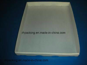 Polypropylene PP Plastic Tray/Correx Coroplast Corflute Sheet with 3mm 4mm 5mm pictures & photos
