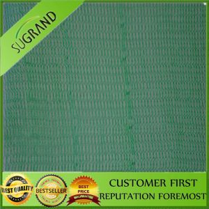Scaffolding Net Wholesale China Production Safety Net pictures & photos