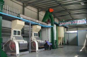 China Hot-Sale Oilseed Pretreatment System pictures & photos