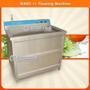 Wasc-11 CE Approved Thawing Machine with Heat Function pictures & photos
